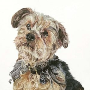 Dog_portrait_laleh_Kamalian_charles_butterbean