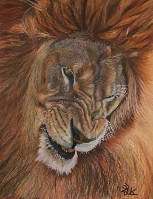 animal_portrait_laleh_Kamalian_charles_butterbean