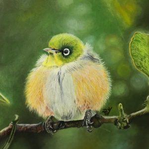 bird_portrait_laleh_Kamalian