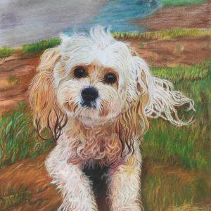 Dog_portrait_laleh_Kamalian_